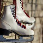 フィギュアスケートの世界選手権